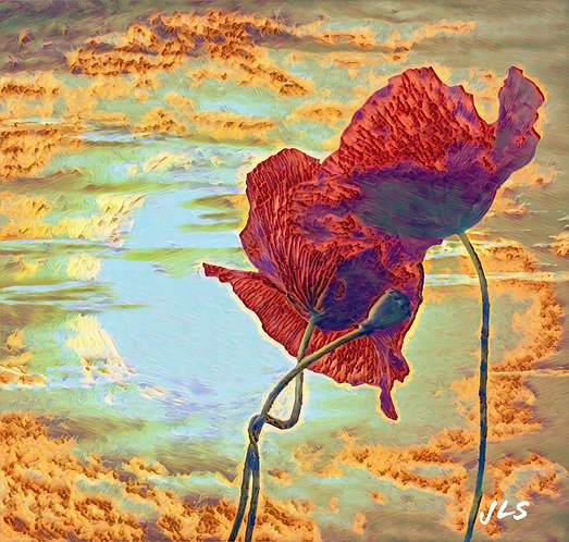 coussin coquelicots Provence painting muriel-m