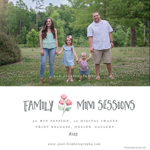 FamilyMinis.jpg
