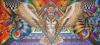 Schrödingers Owl