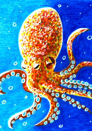 octopus_high_quality.png