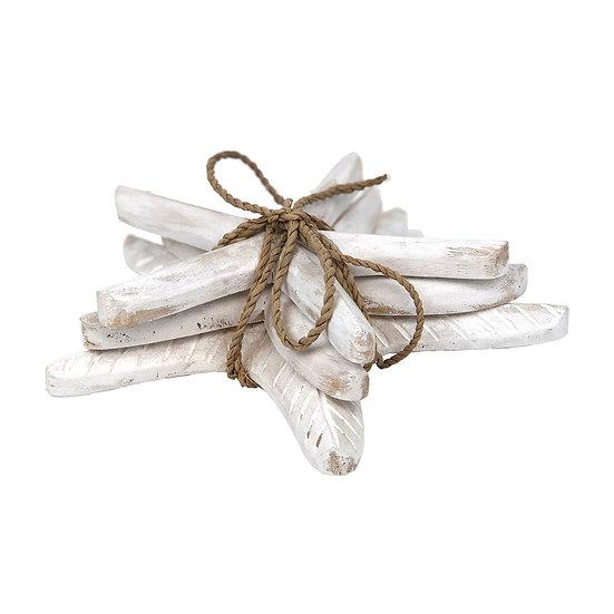 White Wash Starfish