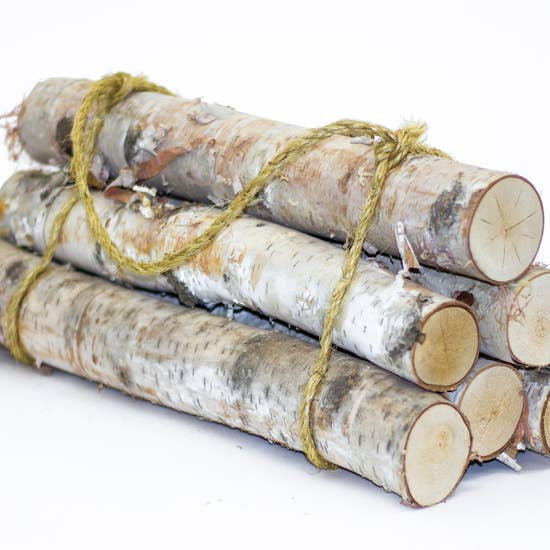 Birch Log Bundle (6 logs)