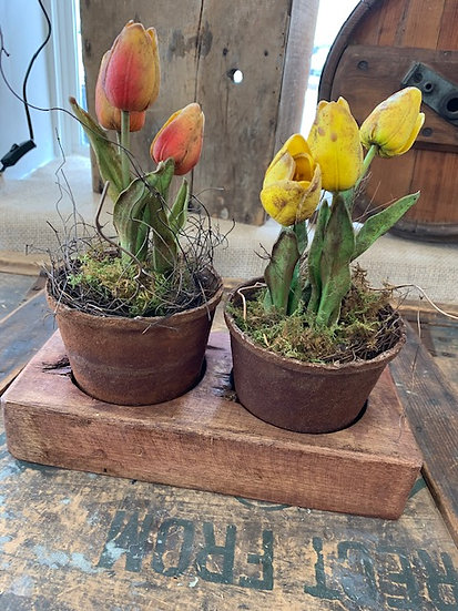 Primitive Tulip Pot