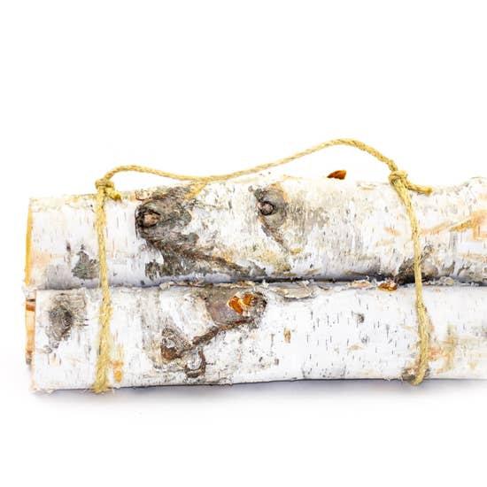Birch Log Bundle (3 Logs)