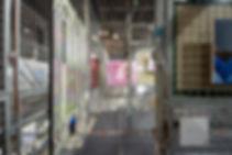 IMGP3536.jpg