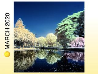 🌕 SUPER FULL MOON MARCH 9TH IN VIRGO: CULTIVATE & ILLUMINATE