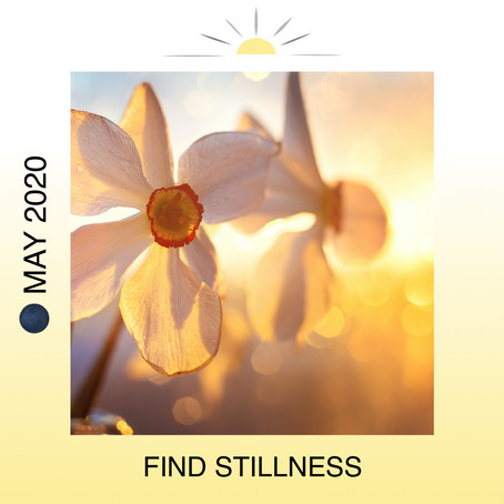 🌑 NEW MOON MAY 22ND IN GEMINI: FIND STILLNESS