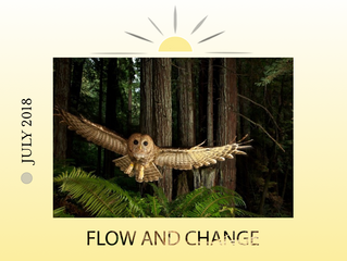 🌑 SUPER NEW MOON SOLAR ECLIPSE IN CANCER — JULY 12TH: FLOW AND CHANGE