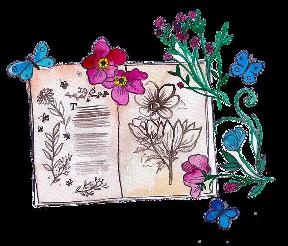 open flower book-01.png