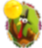 pickleball turkey.png