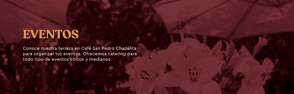 BANNER CON TEXTO.png