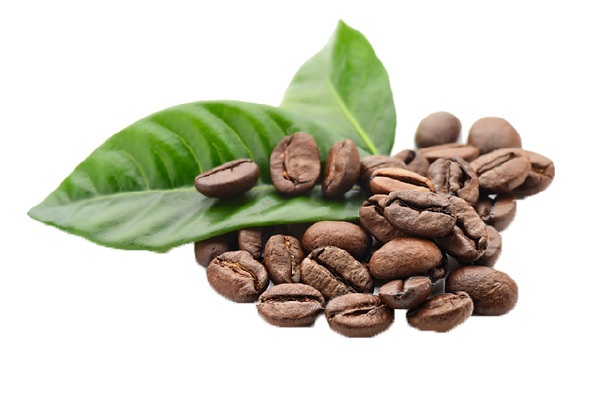 GRANOS DE CAFE.png