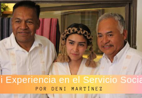 Experiencia de servicio social
