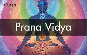 Curso Prana Vidya