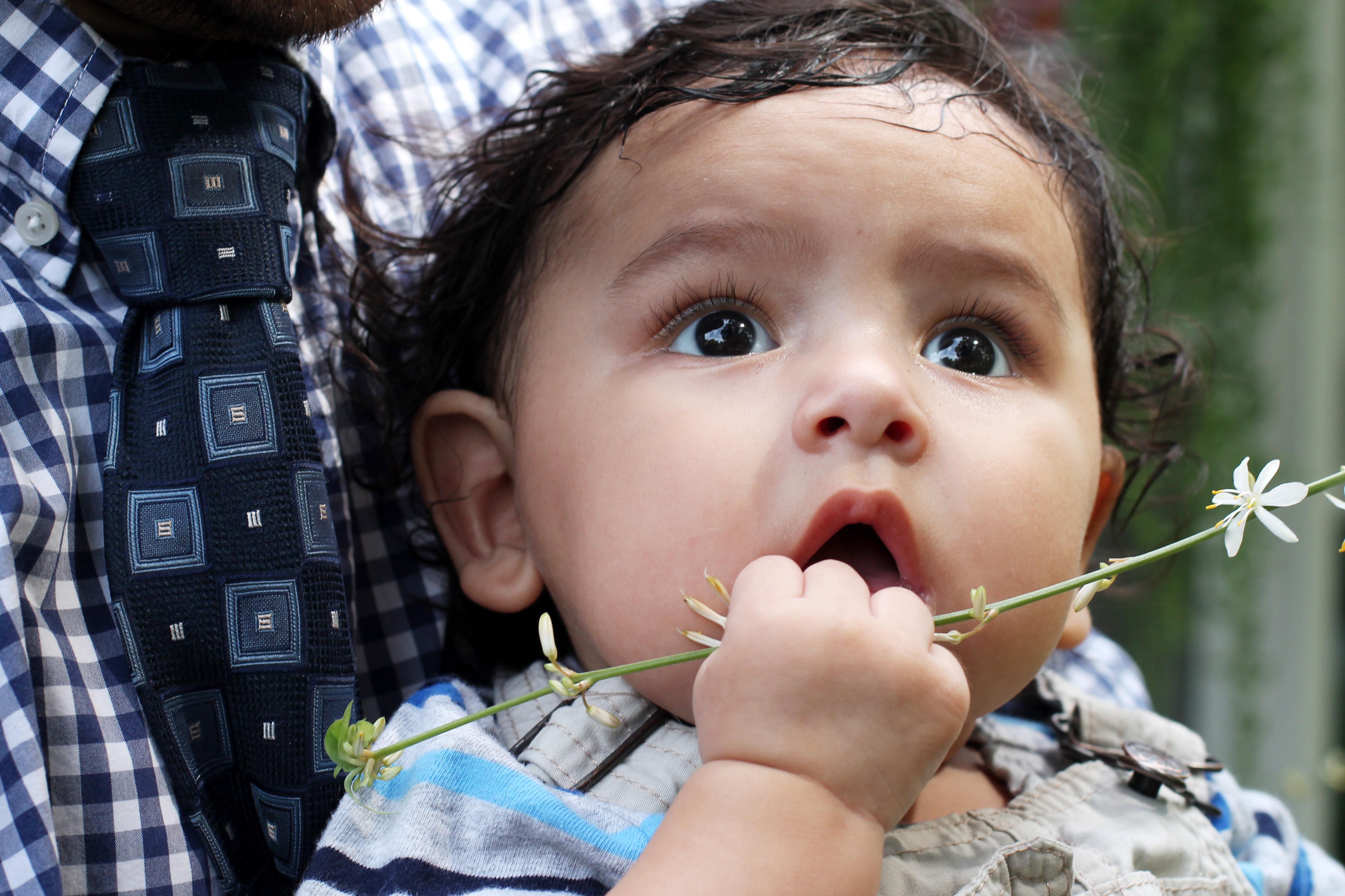 Baby Nehama (121)