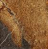Imola Ceramica Kalahari farve MC