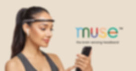 muse-2-facebook-3.jpg