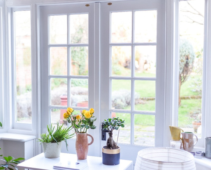 a few plants in front of a french door