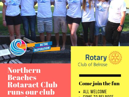 Northern Beaches Rotaract Club