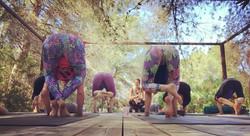 Bakasana on Ananda's Yoga Platform