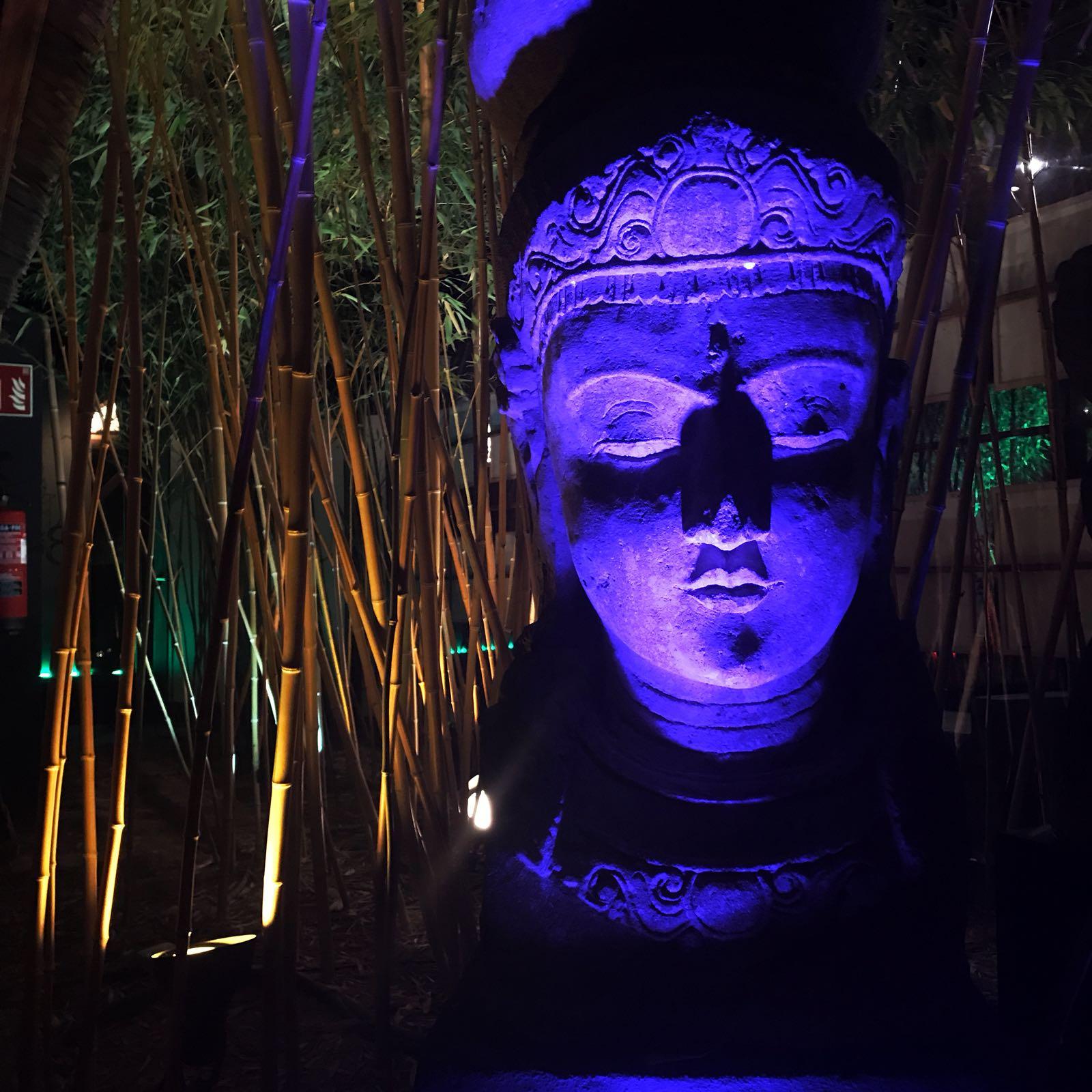Bambuddha night out.