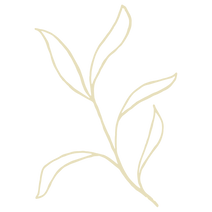 Flora 02.png