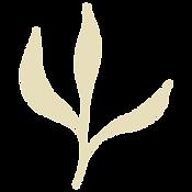 Flora 05.png