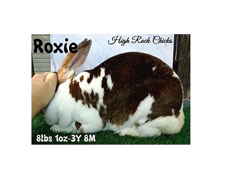 Roxie.jpg