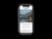 iPhone_X_Template_ausgefüllt_ohneHG.png