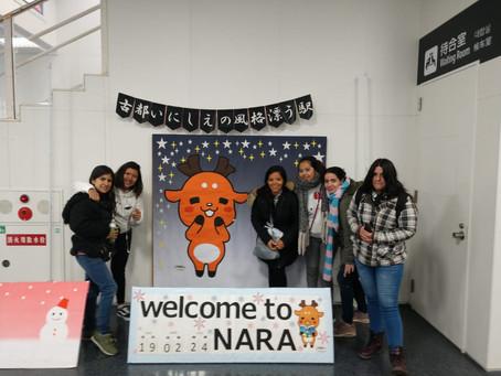 Marzo 2019 : Nara