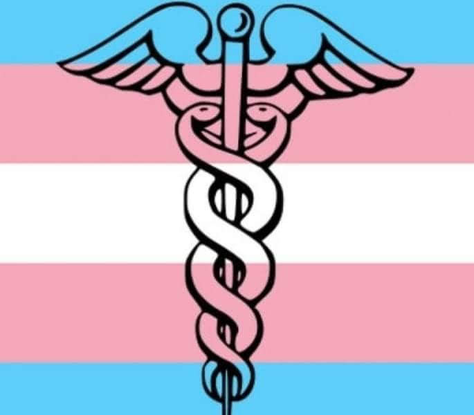 midwife michele provides trans inclusive and competent care