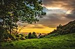 green-trees-under-blue-and-orange-sky-du