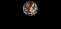 WoC-logo_zwart.png