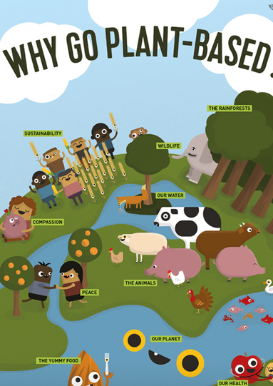 Why go Plant Based?