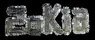 SOKIA_logo.png