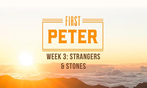 1stPeter_Week3.png