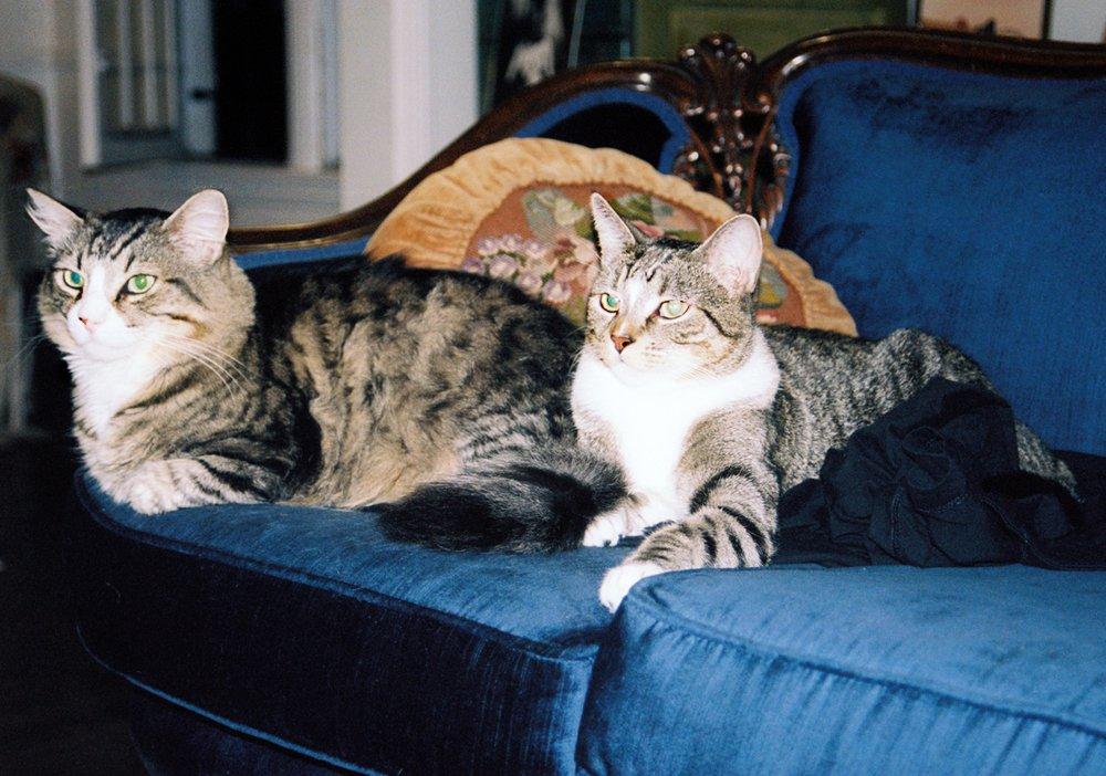 Baxter & Mervyn Leedle
