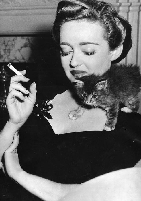 Bette Davis and a kitten.