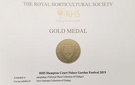 gold medal Ginkgo.jpg