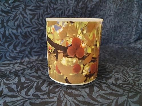 Ginkgo biloba Mug - Fruits