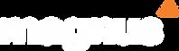 logo_magnus_2020_white.png