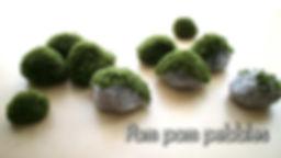 Vignette-vimeo-pompom.jpg