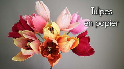 Vignette-vimeo-tulipes-fr.jpg