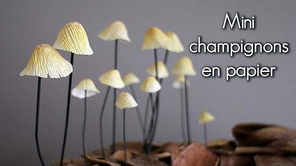 Vignette-vimeo-champi-fr.jpg