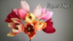 Vignette vimeo tulipes.jpg