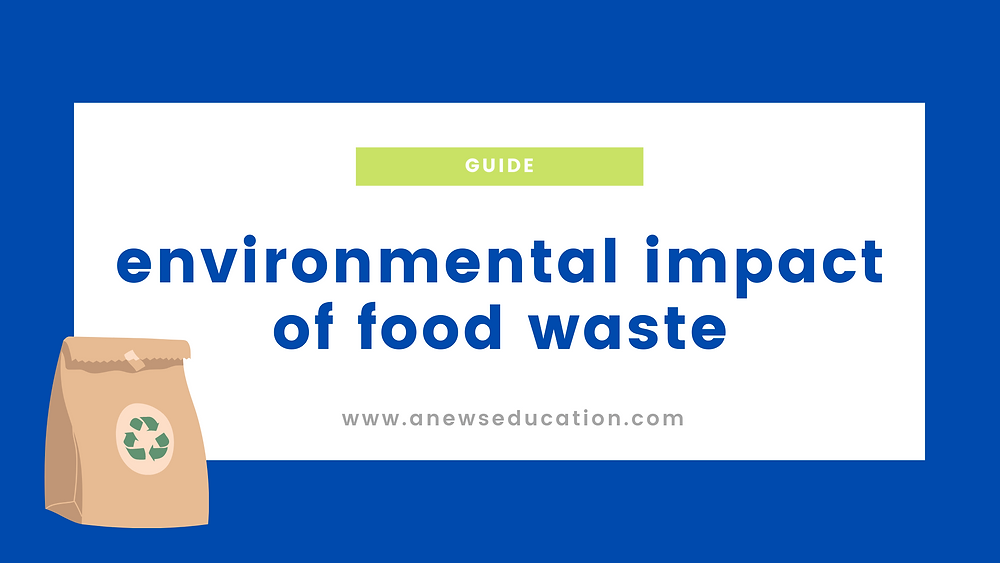 Environmental impact of food waste on A News Education