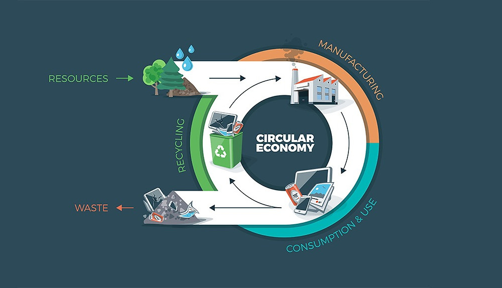 What is the circular economy and how does it work?