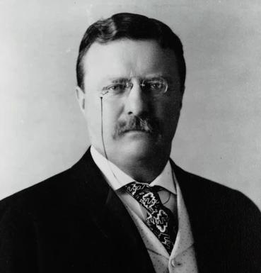 Theodore Roosevelt, Republican President