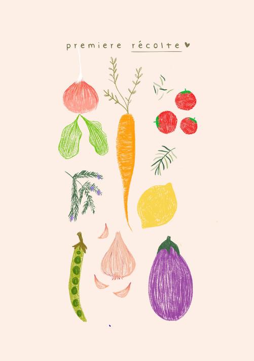 Récolte - 1.jpg