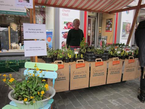 Prospecierara-Setzlingsmarkt in Chur